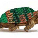 Turtle Traders